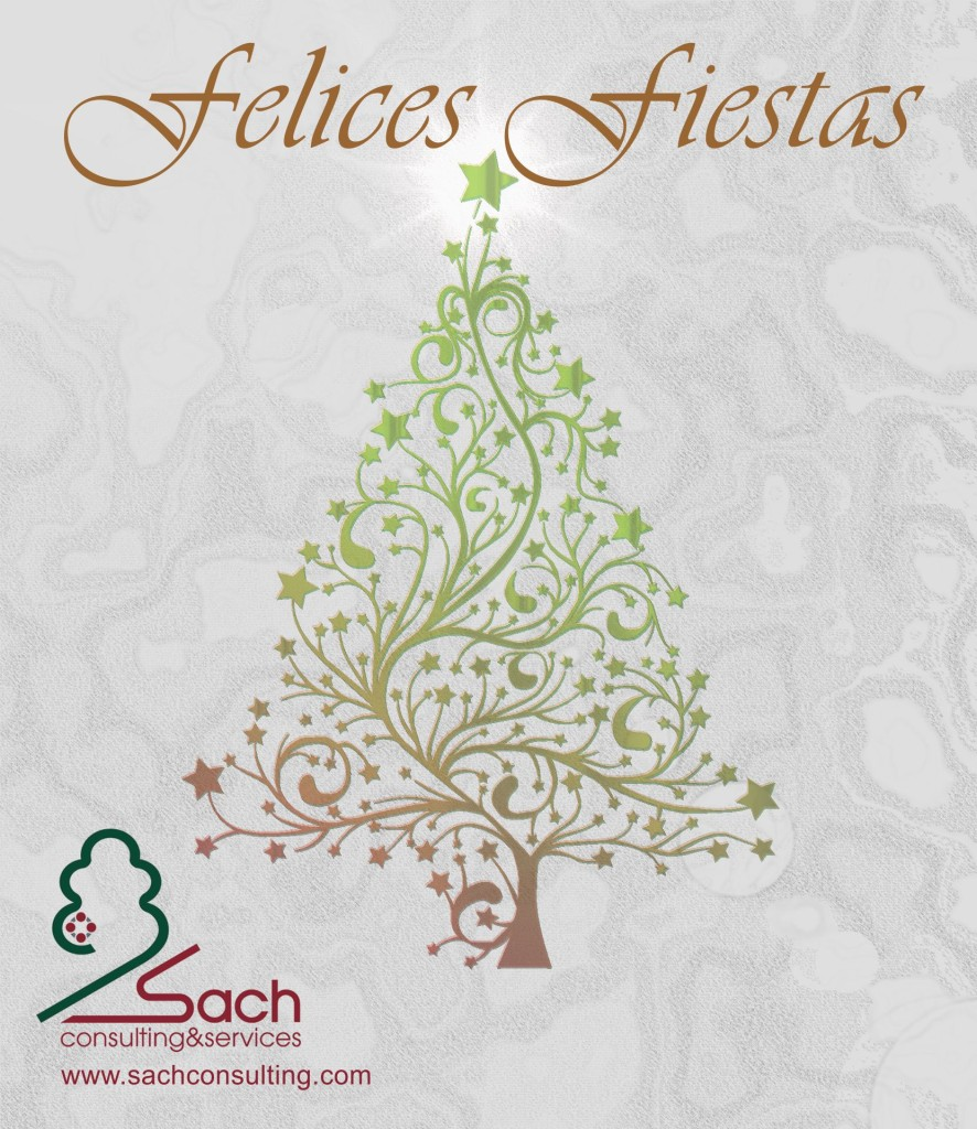 Christmas Sach Consulting